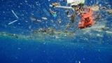완전 분해 '친환경 플라스틱' 가능할까